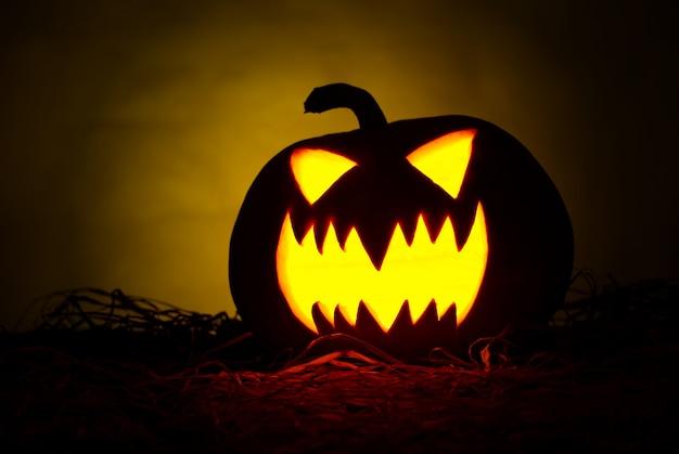 Halloween-pompoen op een zwarte achtergrond