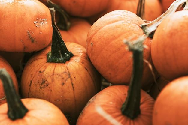 Halloween pompoen stapel close-up achtergrond