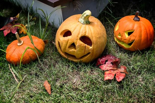 Halloween-pompoenen en decoratie in de binnenplaats