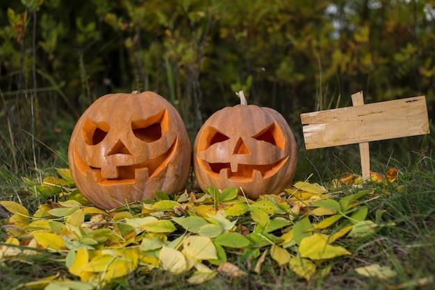 Halloween-pompoenen in het bos