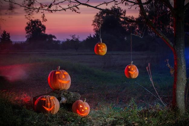 Halloween-pompoenen in nacht openlucht