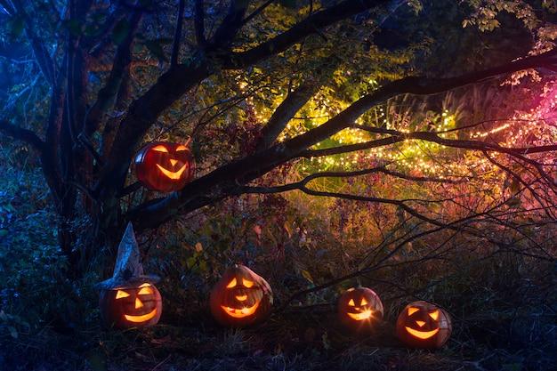 Halloween-pompoenen in nachtbos