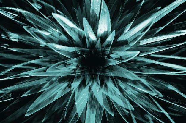 Hallucinaties in vorm van grote turquoise surrealistische plant met lange bladeren close-up.