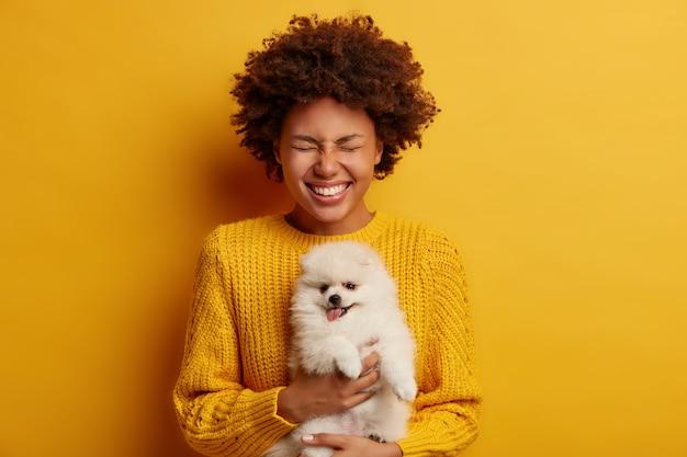 Halve lengte shot van positieve gekrulde vrouw houdt aanhankelijk huisdier spitz puppy, draagt gebreide trui, klaar voor vaccinatie, lacht positief, geïsoleerd op gele achtergrond.