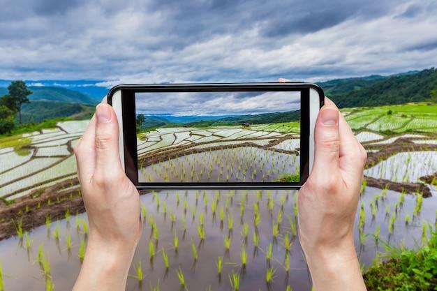 Hand die beeld met mobiel neemt bij groen terrasvormig padieveld in chiangmai, thailand