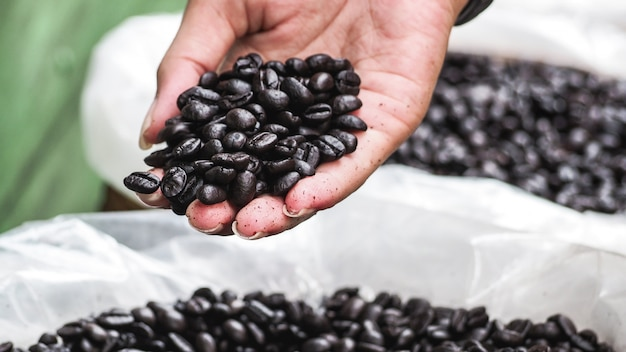 Hand die donkere geroosterde koffiebonen in de zakzak houden die wordt verkocht.