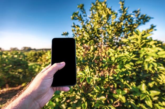 Hand die een celtelefoon in fron van een sinaasappelboom houdt.