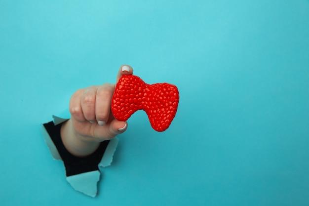 Hand die een schildklier toont uit een gat dat in blauwe document muur wordt gescheurd. reclame voor gezondheidszorg, farmaceutica en medicijnen