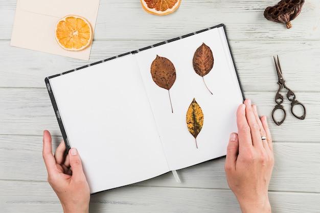 Hand die met de hand gemaakt boek met droge bladeren op bureau houdt