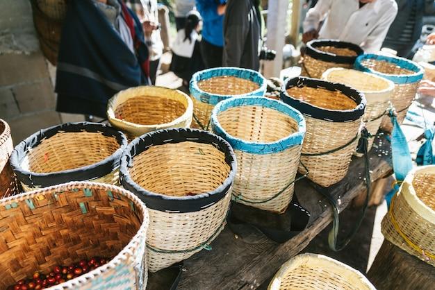 Hand geplukte rijpe rode en gele arabica-koffiebessen in de manden bij het akha-dorp van maejantai op de heuvel in chiang mai, thailand.