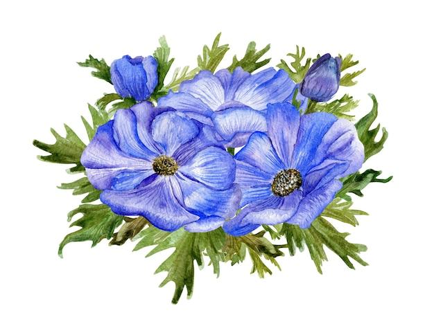 Hand getekend aquarel illustratie van anemonen geïsoleerd. ontwerpelement voor uitnodigingen en stoffen