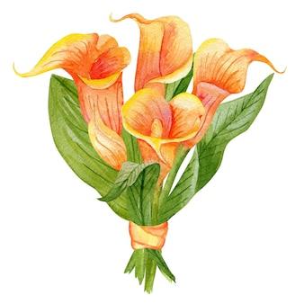 Hand getekend aquarel illustratie van callas geïsoleerd. ontwerpelement voor uitnodigingen en stoffen