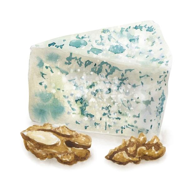 Hand getrokken blauwe kaas en walnoot. vegetarisch gezond eten. aquarel illustratie. sjabloon voor kaart, menu en scrapbooking