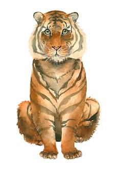 Hand getrokken tijger