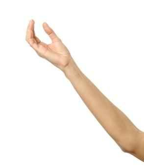 Hand geven, reiken of vasthouden. vrouw hand met franse manicure gebaren geïsoleerd op een witte muur. onderdeel van series