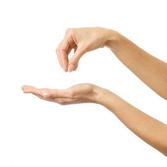 Hand geven, reiken of vasthouden. vrouwenhand gesturing geïsoleerd op wit