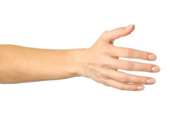 Hand geven voor handdruk. vrouwenhand gesturing geïsoleerd op wit