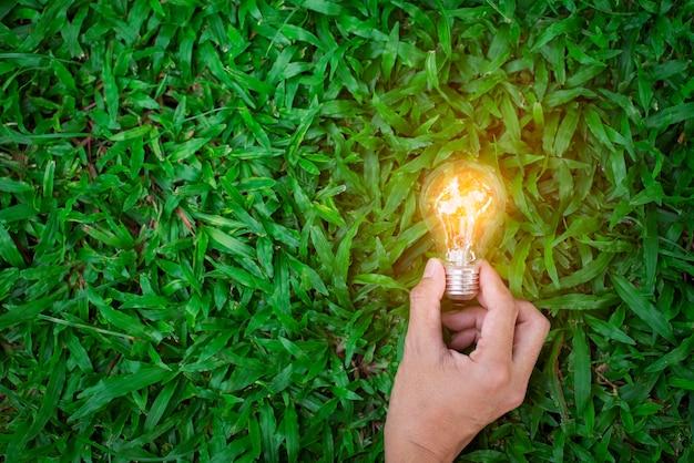 Hand man houdt gloeilamp op groen gras met zonsondergang natuur achtergrond eco concept