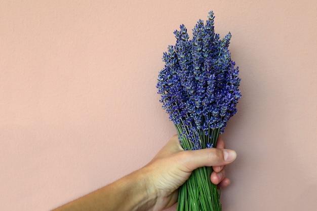 Hand met een boeket lavendel