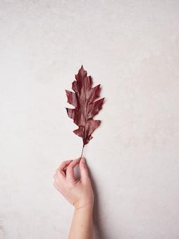 Hand met een rood boomblad op een roze muur achtergrond