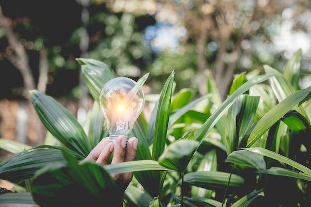 Hand met gloeilamp, energiebronnen voor hernieuwbare energie