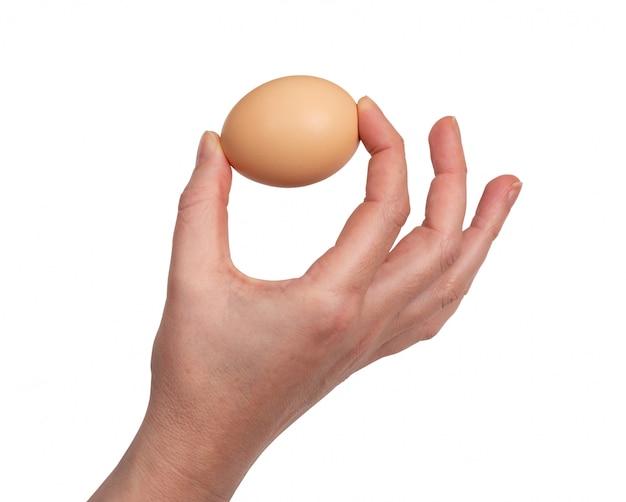 Hand met kippenei geïsoleerd