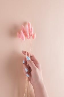 Hand op een beige achtergrond met gedroogde bloemen. kuuroordconcept.