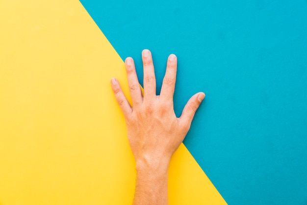 Hand op gele en blauwe achtergrond