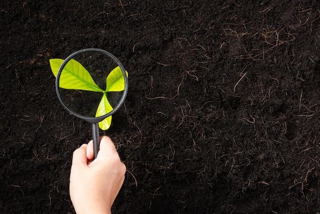 Hand van vrouw met een vergrootglas op zwarte grond in de tuin