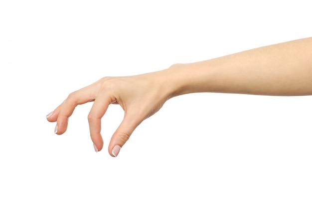 Hand voegt voedselzout en kruiden toe of houdt een voorwerp vast