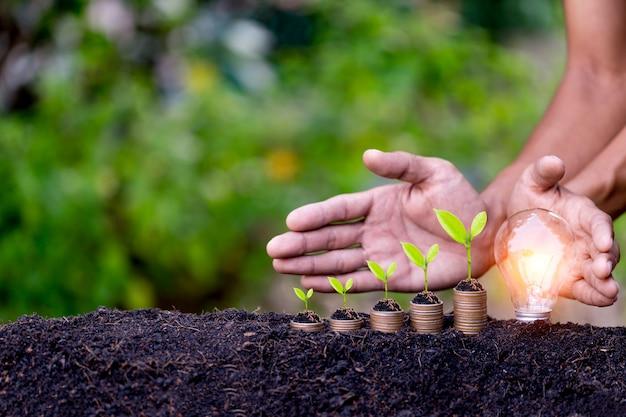 Handbescherming gloeilamp, energiebronnen voor hernieuwbare, natuurlijke energie en hou van het wereldconcept.