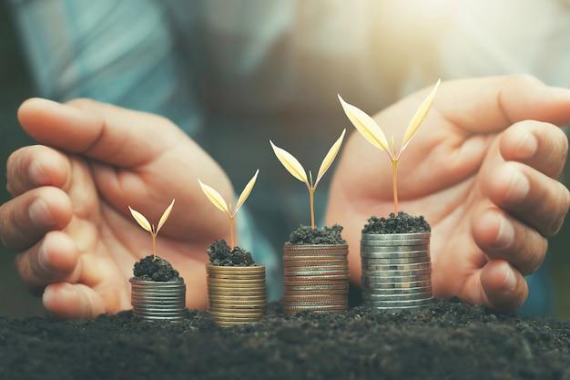 Handbesparend geld en groeiende jonge plant op munten. financiën boekhoudkundige concept