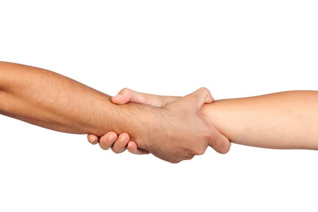 Handdruk van vriendschap op witte achtergrond wordt geïsoleerd die