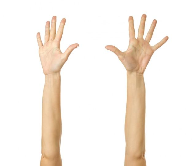 Handen bereiken. vrouwenhand gesturing geïsoleerd op wit