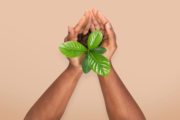 Handen cupping plant red het milieu campagne
