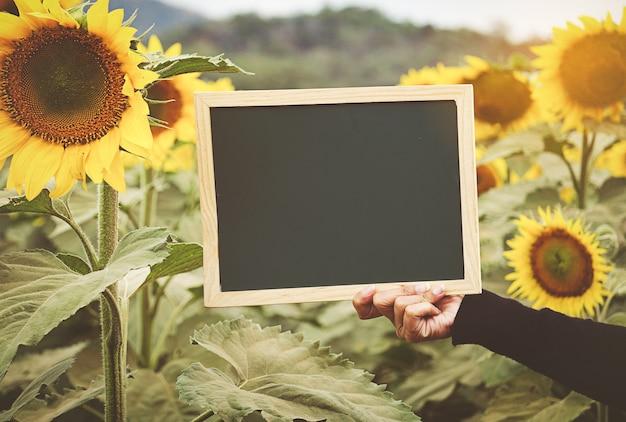 Handen die bord op zonnebloemachtergrond houden