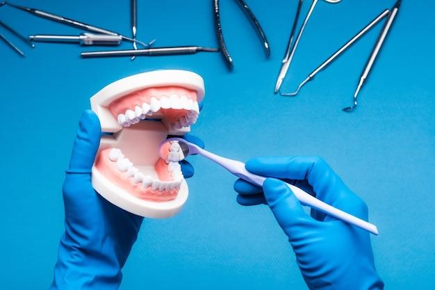 Handen in blauwe handschoenen met tandheelkundige tanden model en spiegel op blauwe achtergrond met instrumenten