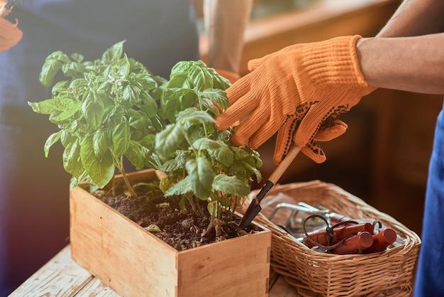 Handen in handschoenen met tuingereedschap op de grond