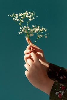 Handen met lentebloemen