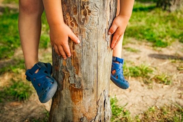 Handen van een gelukkig kind in de natuur