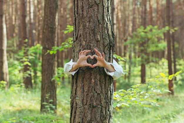 Handen van een jonge vrouw knuffelen een boom in het bos en tonen een teken van hart en liefde voor de natuur