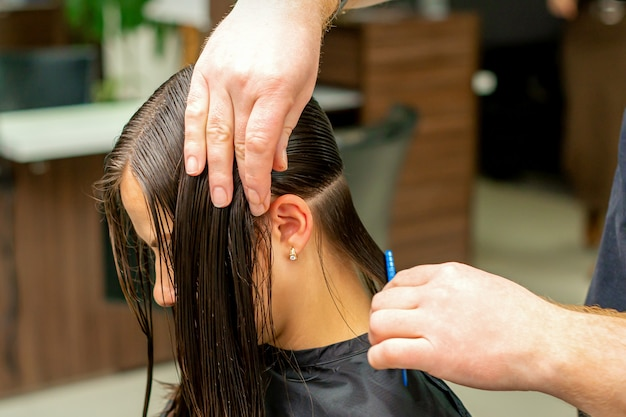 Handen van een kapper die het haar van een jonge vrouw kamt die in secties bij de kapperszaak worden gescheiden