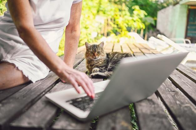 Handen van een oudere senior vrouw die een pluizige straatkat aait en buiten in de zomertuin op een laptop online werkt.