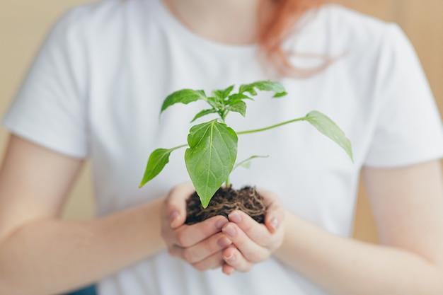 Handen van een vrouw in een wit t-shirt met een zaailing van een bloempot in een boom