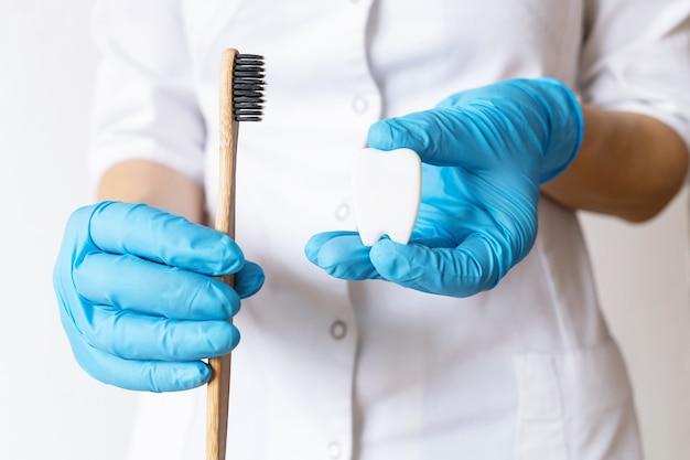 Handen van tandarts arts in blauwe handschoenen met tand model, bamboe tandenborstel met natuurlijke haren.