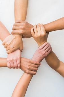 Handen verenigd samen in teamwerk op witte achtergrond.