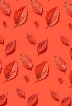 Handgemaakt creatief herfstpatroon van bladeren van verschillende grootte en vormen op een koraalachtergrond. plat leggen.