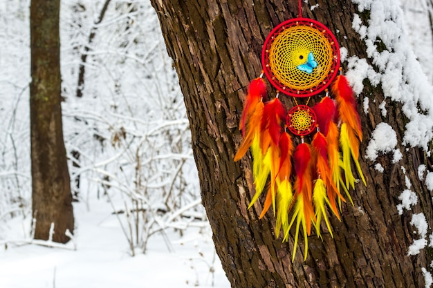 Handgemaakte dromenvanger met veren op een winterlandschap