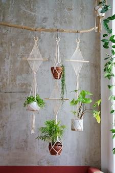 Handgemaakte katoenen macramé plantenhanger opknoping van hout tak over grijze muur thuis