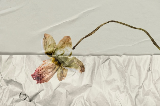Handgetekende bloem met gerimpelde papiertextuur geremixte media